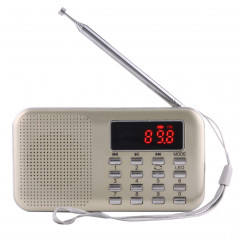 Y-896 Portable Stereo LCD Digital FM AM Radio Speaker, Rechargeable Li-ion Battery, Support Micro TF Card / USB / MP3 Player